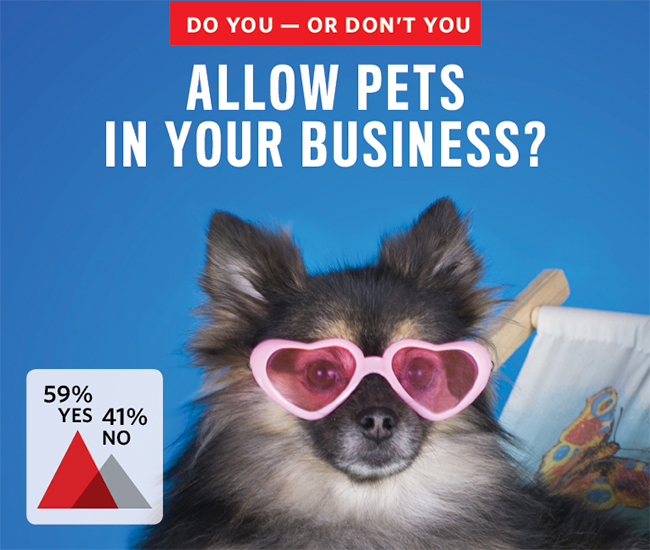 Do you allow pets in your business?