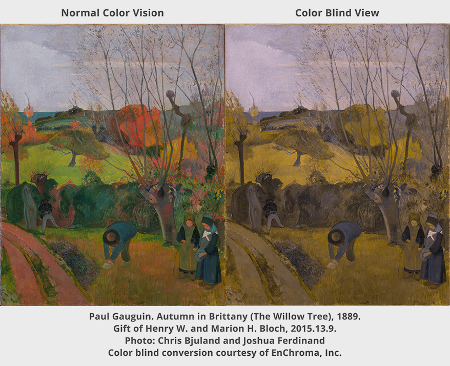 EnChroma Glasses Enable Color Blind Visitors to Experience Nelson-Atkins Museum of Art in Vibrant Color