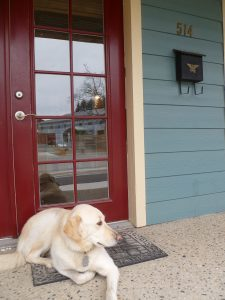Pend Oreille Vision Care 2020 front door with dog Lina
